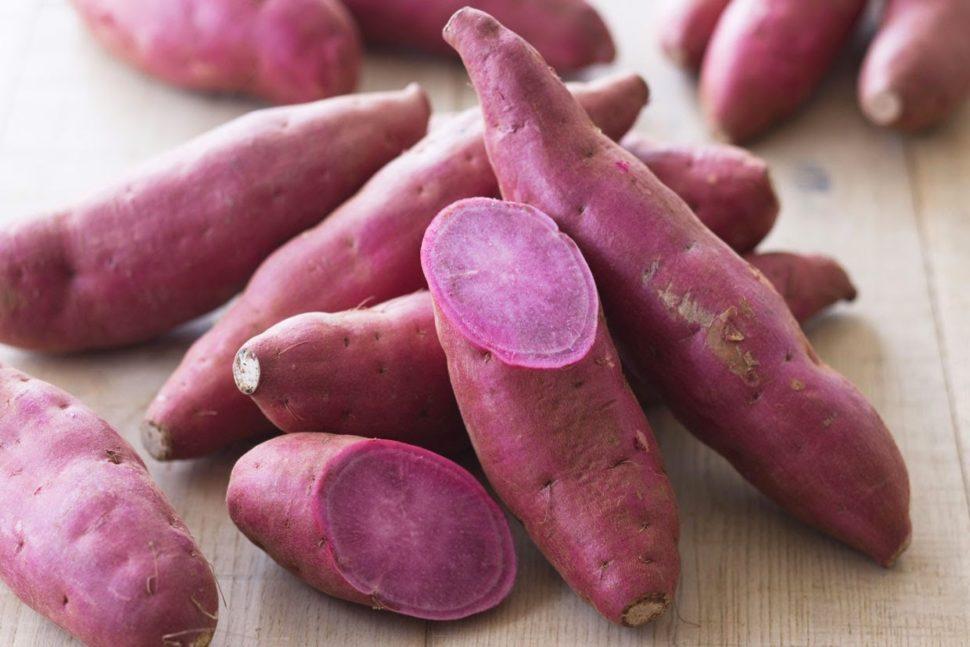 Các thực phẩm giúp phòng chống bệnh ung thư hiệu quả