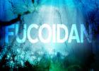 Fucoidan là gì?